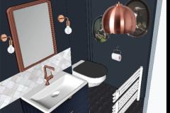 3D Salle de douche Paris 10   /     Ambiance cabinet de curiausité